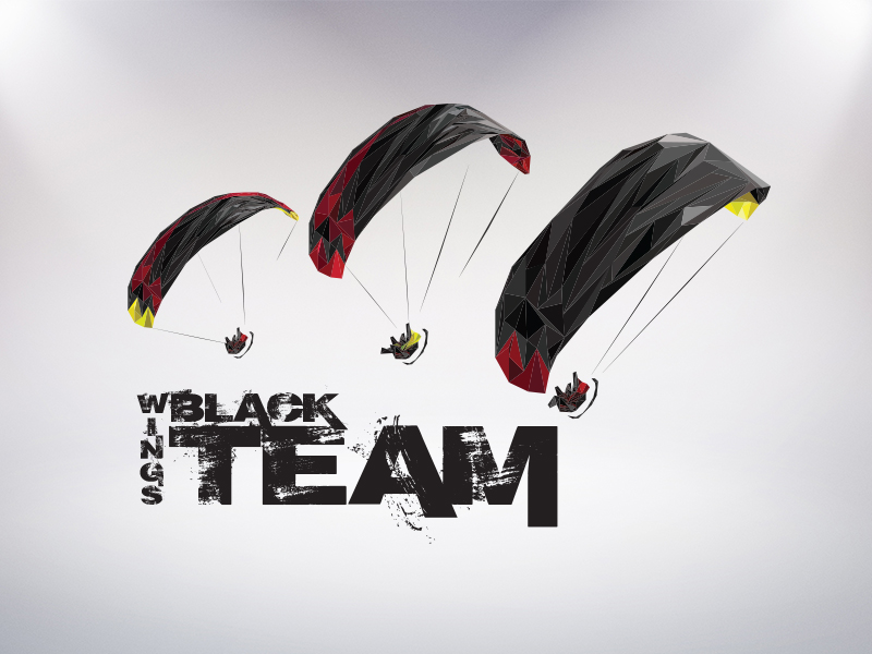 BlackWingsTeam